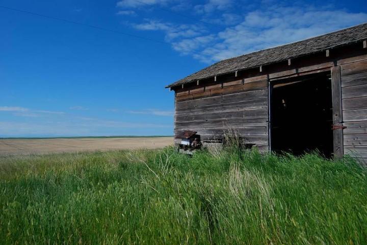 Canadian-Badlands-Schuppen-im-Grasland-1