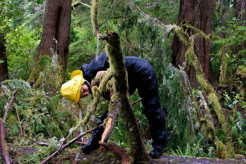 Vancouver Island Kanada - Im Einbaum zur Regenwald-Apotheke - out-of-canada.olehelmhausen.de - 4