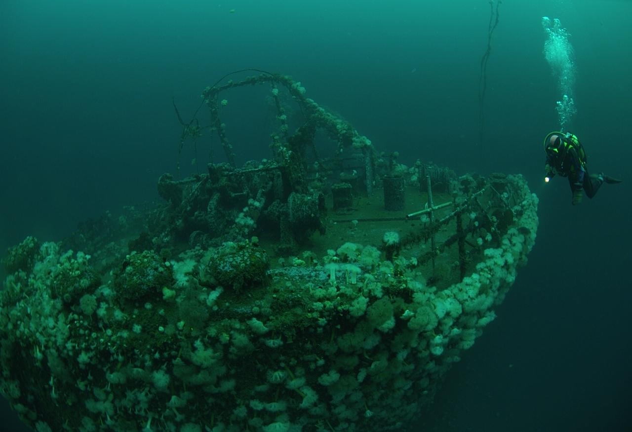 Bell Island Neufundland - Bell Island (Newfoundland): Wie der Zweite Weltkrieg nach Kanada kam - out-of-canada.olehelmhausen.de