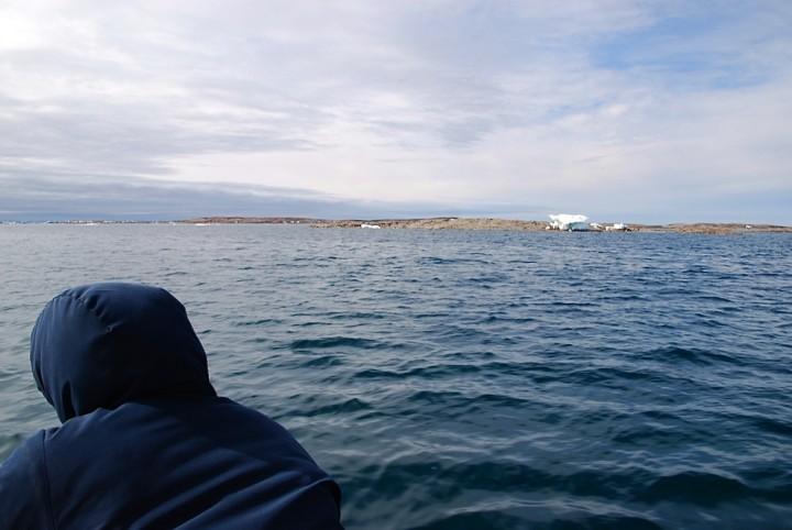 Mein Arktis-Abenteuer (3/4): Die Eisbärin und die Knochenstätte - 2