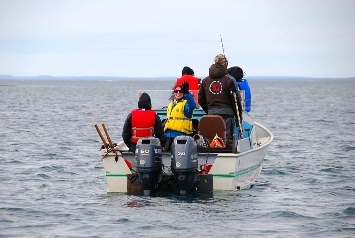 Mein Arktis-Abenteuer (3/4): Die Eisbärin und die Knochenstätte - 4