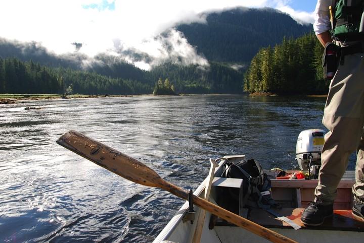 Grizzly-Bären beobachten in Kanada – zu Besuch in der Great Bear Lodge Vancouver Island - 3